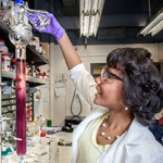 Louisiana State University Is a Mecca for Women Chemists